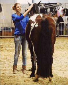 тейпирование ноги лошади