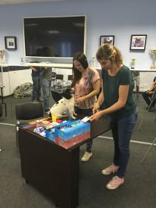 кинезиотейпирование собаки